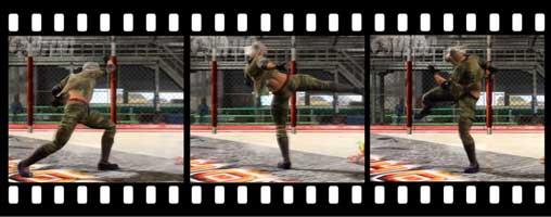 class-circular-mid-kick-anim.jpg